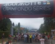 Marmotte Pyreneeen