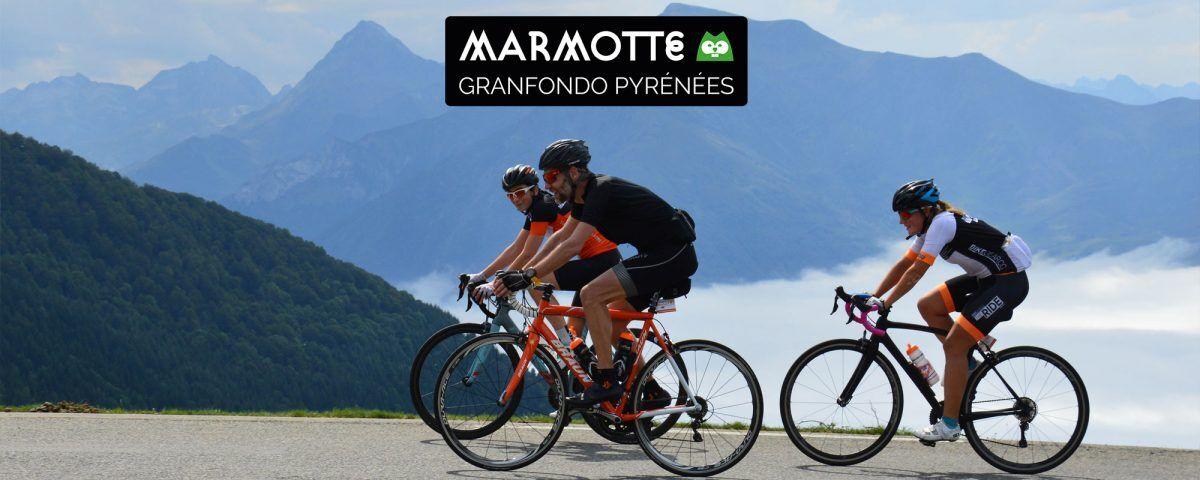 Marmotte Pyreneeen Arrangement