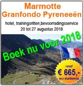 Marmotte Pyreneeën
