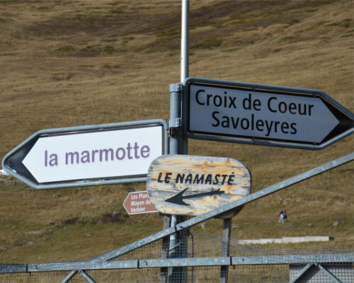 Marmotte Valais